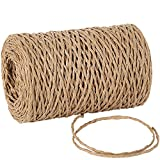Tenn Well Natural Paper String, 328 Feet 2mm Twisted Craft Raffia Paper Ribbon for Gift Wrapping, Crafting, Packing, Crocheting