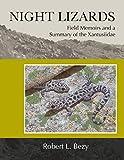 Night Lizards
