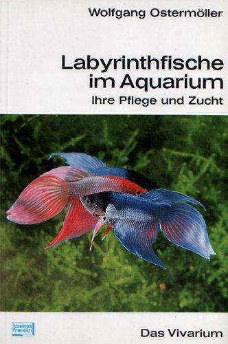 Labyrinthfische im Aquarium. Ihre Pflege und Zucht