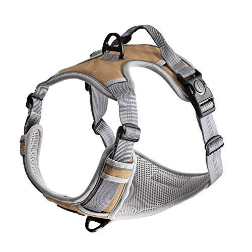 WePet Front Range Dog Harness, Adjustable, Reflective and Padded Pet Vest Harness, No Pull, Easy Control Handle and Front Clip for Walking, Training Small, Medium, Large Dogs