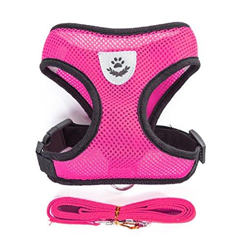 Air Mesh Hundegeschirr Atmungsaktiv Welpengeschirr für Klein Hunde Vest Harness Brustgeschirre Haustier Softgeschirr mit 1,1M Hundeleine Führleine Schleppleine (S, rosa)