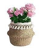 Cesta de almacenamiento de pasto marino natural de SZETOSY, con borla blanca, plegable, con asa para lavandería, juguetes o macetas, guardería de 27 x 24 cm