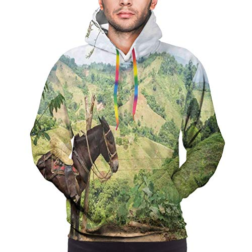 Men's Hoodies Sweatshirts,A Donkey with Green Hills In Rural Colombia Mountains Landscape Illustration,XL