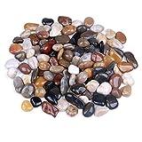 Rocks for Succulent Plants or Bonsai Garden, 3lb Bulk Bag - 1 inch 20-30mm Mixed Color Decorative Gravel Pebbles for Plants