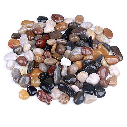 Rocks for Succulent Plants or Bonsai Garden, 3lb Bulk Bag – 1 inch 20-30mm Mixed Color Decorative Gravel Pebbles for Plants