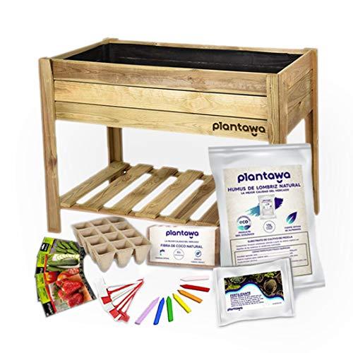 PLANTAWA Kit Cultivo Completo XL, Kit de Cultivo en Casa, Uso de Huerto Urbano, Mesa de Cultivo, Madera Natural