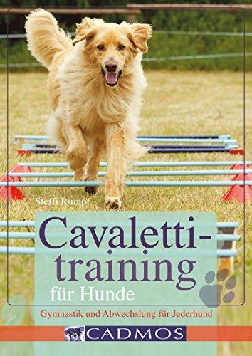 Cavalettitraining für Hunde: Gymnastik und Abwechslung für Jederhund (Hundesport)