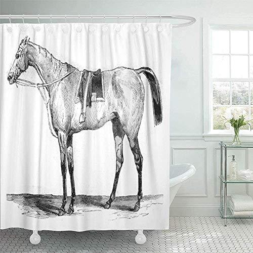 NotApplicable Shower Curtain Pura Raza Caballo De Carreras Vintage Grabado Magasin Pittoresque 1845 con Ganchos Baño Impermeable Decorativo Interior Baño Cortina De Ducha 183X183 Cm Unisex