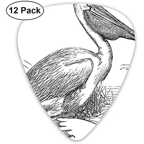 Gitaar Picks 12-Pack, Gegraveerde Illustratie Van Een Pelikaan Vogel Zoologie Thema Natuur Luchtdier