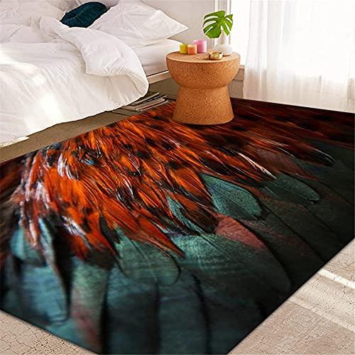 RUGMRZ Alfombra Pluma 3D Visual Moderno Sala de Estar Alfombra Grande Té táctil Peludo Corto Varios Techo alfombras Entrada Lavable y fácil de cuidar. Alfombra bañera80X200CM/2ft 7''X6ft 7''