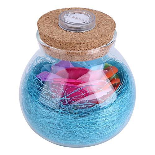 Emoshayoga Lámpara de Botella romántica Botella romántica Luz de Color Claro Que Cambia Control Remoto Decoración de Fiesta de Bodas para propuestas de(Blue)