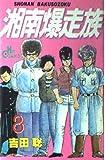 湘南爆走族 (8) (ヒットコミックス (514))