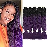 Purple Braiding Hair Ombre Braiding Hair Extensions Hair for Braiding...