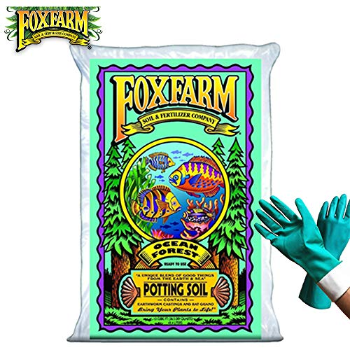 FoxFarm Ocean Forest Potting Soil Organic Mix Indoor Outdoor For Garden And Plants - Organic Plant Fertilizer - 38.5 Quart (1.5 cu ft). - (Bundled with Pearsons Protective Gloves) (1 Pack)
