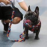Everking Arnés ajustable para perros pequeños, medianos y grandes, transpirable, con cierre de metal, multicolor, Small, 0202-9