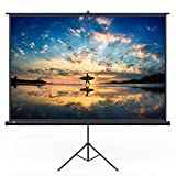 TaoTronics Projector Screen with Stand, TT-HP020 Indoor and Outdoor Movie Screen 120' Diagonal 4:3 with Wrinkle-Free Design (Easy to Clean, 1.1 Gain, 160° Viewing Angle and Includes a Carry Bag)