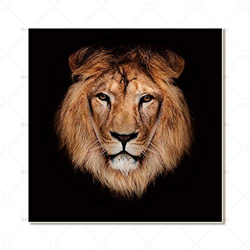Animal Canvas Painting Home Decoration Wall Art Poster and Print Print Decoración del hogar 40X40cm