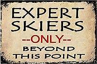 Expert Skiers 金属板ブリキ看板警告サイン注意サイン表示パネル情報サイン金属安全サイン