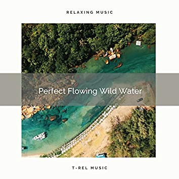 2021 New: Perfect Flowing Wild Water