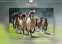 Pferde Vom Minishetty bis zum Kaltblut (Wandkalender 2022 DIN A4 quer): Lustiger Pferdemixkalender (Monatskalender, 14 Seiten )