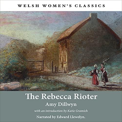 The Rebecca Rioter cover art