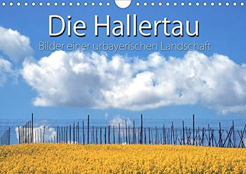 Hallertau (Wandkalender 2020 DIN A4 quer): Stille, reizvolle Landschaft im Herzen Bayerns. (Monatskalender, 14 Seiten ) (CALVENDO Natur)