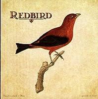 Redbird by REDBIRD (2005-02-22)