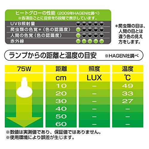 ジェックスエキゾテラ(EXO-TERRA)ヒートグロー赤外線照射スポットランプ75W
