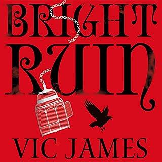 Bright Ruin cover art
