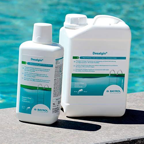 BAYROL Desalgin - Flüssiges Algizid - Hochkonzentriert, ohne Chlor und mit Klareffekt - Verhindert Algenwachstum im Pool - 6 L