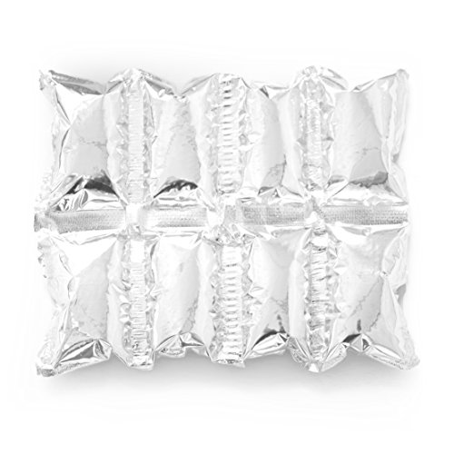 Reusable Ice Pack Sheets by Insta Freeze   For Coolers and Shipping - Stays Cold For 48 Hours (10 Pack 4x2 Sheets)