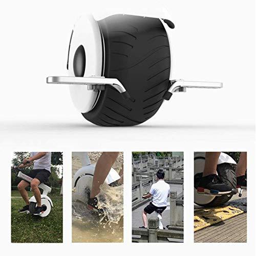 Monowheel XYDDC E-Einrad mit Lenker Bild 5*