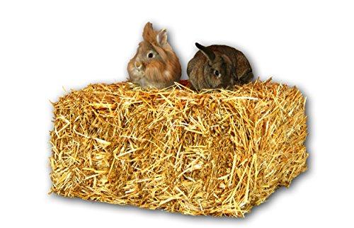 Stroh 15kg Heu-Scheune® Strohballen Einstreu Kaninchen Meerschweinchen Hase Deko