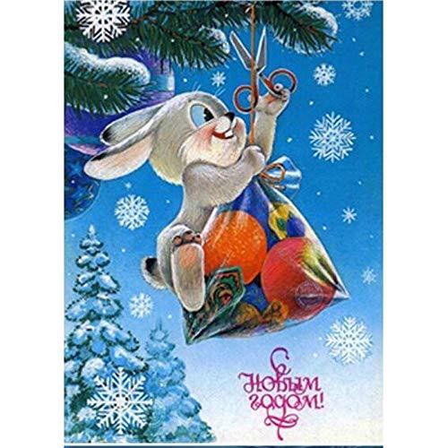 Kits de pintura de diamante Conejo animal de dibujos animados de copo de nieve Puntada Rhinestone Bordado Artes Artesanía Kits para Decoración de la pared del Hogar 30x40cm(Sin marco)