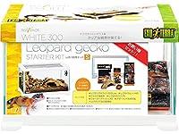 レオパ飼育キットS ジェックスGEX エキゾテラEXOTERRA ヒョウモントカゲモドキの飼育セット 消費税