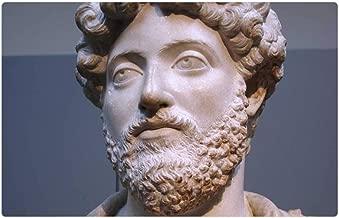 Tree26 Indoor Floor Rug/Mat (23.6 x 15.7 Inch) - Marcus Aurelius Roman Emperor Statue Face Beard