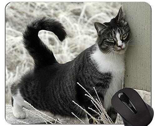 Yanteng Alfombrillas de ratón, Alfombrilla de ratón para Juegos de Mascotas de Animales de Color Amarillo Blanco Personalizado, Alfombrilla de ratón de Gato de Pelo Corto Americano con Borde Cosido