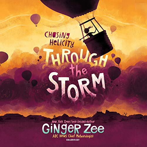 Chasing Helicity: Through the Storm cover art