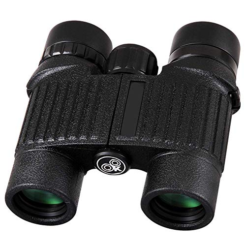 Best Bargain Outdoor Binoculars for Adults kids HD Professional Binoculars professional birding telescope small telescope waterproof all outdoor sightseeing travel hunting game bird travel to see the stars for Bir