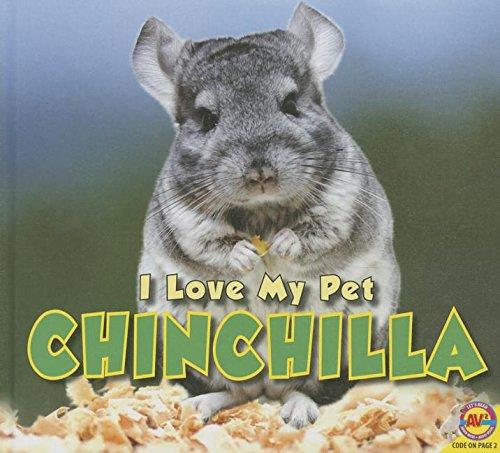 Chinchilla (I Love My Pet)