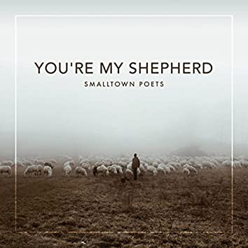 You're My Shepherd (feat. Mac Powell)