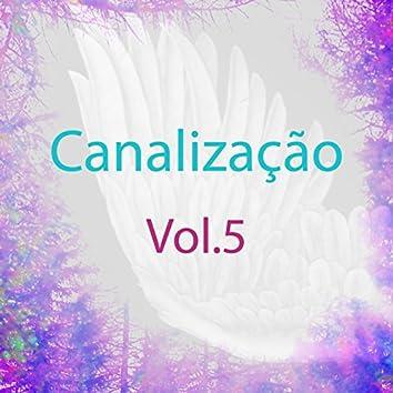 Canalização, Vol. 5 (Guias Espirituais)