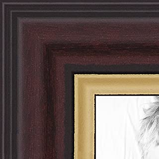ArtToFrames 16x20 inch Mahogany and Gold Slope Frame Picture Frame, WOM0066-83120-YMAH-16x20