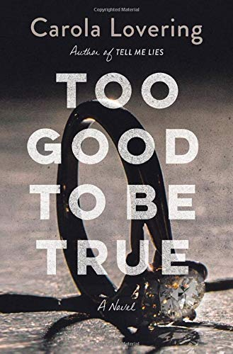 Too Good to Be True: A Novel