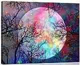 WISKALON [con Marco de Madera] Pintar por Numeros Kit para Adultos Niños Principiantes Luna Pintura de Bricolaje Sobre Lienzo Decoraciones para el Hogar 16 * 20 Pulgadas