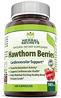 Herbal Secrets Hawthorn Berries 565 Mg 120 Capsules (Non-GMO) - Supports Cardiovascular Health, Helps Maintaining Existing Blood Level, Powerful Anioxidant Activity*
