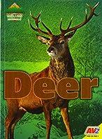 Deer (Backyard Animals)