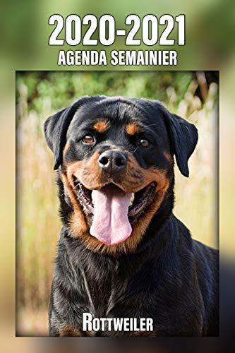 2020-2021 Agenda Semainier Rottweiler: A5, 221 Pages   24 Mois   Planificateur & Organiseur   Calendrier   Une double page par semaine   Journal   Agenda   En Francais