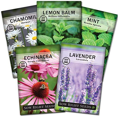 Sow Right Seeds - Herbal Tea Collection - Lemon Balm, Chamomile, Mint, Lavender, Echinacea Herb Seed for Planting; Non-GMO Heirloom Seed, Instructions to Plant Indoor or Outdoor; Great Gardening Gift