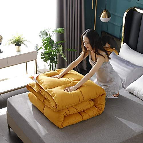 CHOU DAN Bedsure Bettdecke 135x200 cm 4 Jahreszeiten,Verdicken Sie den warmen Winterquilt mit einem doppelten Frühling und Herbst